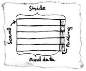 BitmapData layout